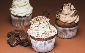 Picture food, chocolate, cream, dessert, cakes, chocolate, sweet, cupcake, cupcakes, cream, dessert, muffins