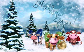 Picture snow, ate, New year, symbol, 2021
