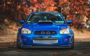 Picture Subaru, Impreza, Subaru Impreza, Subaru Impreza STI