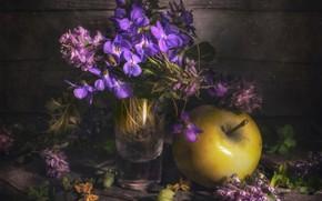 Picture Apple, a bunch, violet