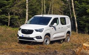 Picture photo, White, Opel, Car, Combo, Van, 2019, Cargo 4×4