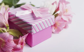 Picture flowers, gift, Lily, tape, pink, pink, flowers, romantic, gift, lily