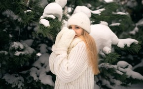 Picture winter, girl, snow, branches, hat, blonde, needles, pine, mittens, sweater, mittens, Николай Брехов