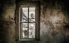 Picture house, wall, window