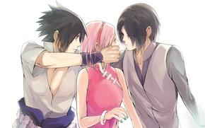 Picture Naruto, Naruto, Sasuke Uchiha, Sakura Haruno, Sasuke Uchiha, Sakura Haruno
