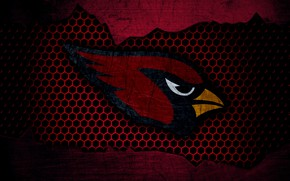 Picture wallpaper, sport, logo, NFL, american football, Arizona Cardinals
