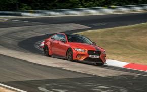 Picture orange, Jaguar, track, 2019, XE SV Project 8