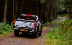 Picture road, forest, pickup, Isuzu, D-Max, 2019, UK version, XTR