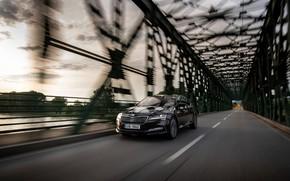 Picture sedan, Skoda, Skoda, on the bridge, four-door, Superb, 2020, the color is a dark unfiltered …