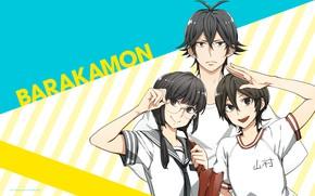 Picture girls, anime, art, guy, Barakamon