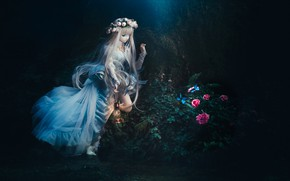Picture flowers, night, doll, wreath