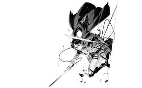 Picture figure, blade, art, white background, cables, Attack Of The Titans, Shingeki No Kyojin, Levi Ackerman, …