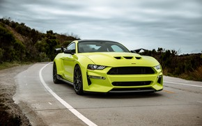 Picture Mustang, Ford, front view, tuning, 2019, Revenge GT