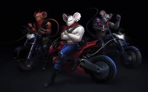 Picture Minimalism, Figure, Bike, Art, Fiction, Helix, Motorcycles, Game Art, Vinnie, Fan Art, Biker Mice from …