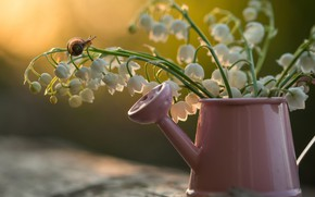 Picture snail, lake, lilies of the valley