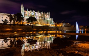 Picture water, trees, night, lights, reflection, palm trees, home, lights, Cathedral, fountain, temple, Spain, Mallorca, Mallorca, …