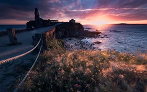 Picture road, sea, the sky, grass, the sun, clouds, light, sunset, flowers, stones, rocks, the wind, …