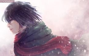 Picture girl, scarf, Shingeki No Kyojin, Mikasa Ackerman