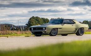 Picture Road, Grass, Trees, Chevrolet, 1969, Camaro, Drives, Chevrolet Camaro, Muscle car, Classic car, Wide Body …