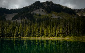 Picture forest, mountains, lake, reflection, mountain, ate, top