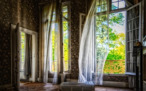 Picture greens, summer, light, trees, garbage, the wind, Wallpaper, wall, Windows, interior, the door, floor, curtains, …