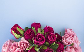 Picture flowers, roses, pink, pink, flowers, beautiful, romantic, roses