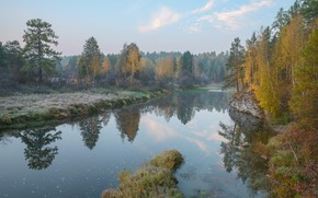 Picture autumn, forest, trees, fog, pond, morning