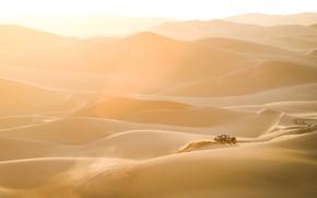 Picture Sand, Auto, Mini, Sport, Desert, Machine, Landscape, Car, 300, Rally, Dakar, Dakar, Rally, Dune, Buggy, …