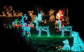 Picture winter, night, lights, holiday, glade, Christmas, New year, Santa Claus, deer, garland, figures, Christmas decorations, …