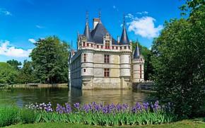 Picture flowers, river, castle, France