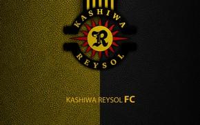 Picture wallpaper, sport, logo, football, Kashiwa Reysol