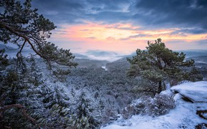 Wallpaper winter, frost, forest, the sky, clouds, snow, mountains, branches, nature, open, hills, winter, view, height, ...
