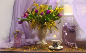 Picture flowers, box, perfume, window, Cup, tulips, bottle, vase, still life, curtain, tulle, Mimosa, Valentina Fencing