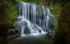 Picture forest, nature, stones, waterfall, moss, stream