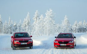 Picture winter, two, red, Skoda, Superb, Karoq
