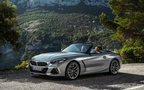 Picture road, mountains, grey, vegetation, BMW, Roadster, BMW Z4, M40i, Z4, 2019, G29