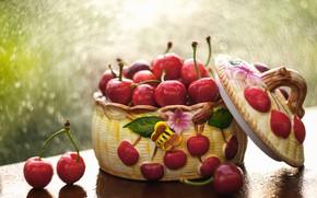 Picture drops, light, cherry, berries, table, rain, moisture, blur, cover, still life, wet, cherry, bokeh, composition, …
