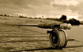 Picture Rod, Macro, Fishing, Sepia