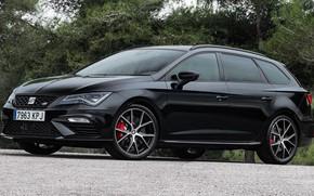 Picture car, machine, room, drives, black, side, wheel, Seat, Carbon Edition, Seat Leon, black car, Seat …