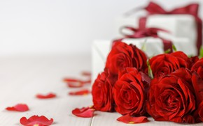 Picture flowers, gift, roses, bouquet, petals, red, red, love, flowers, romantic, valentine's day, petals, roses, gift …