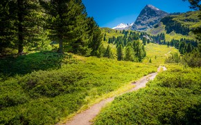 Picture summer, the sky, trees, mountains, nature, Austria, path, Tyrol, Умхаузен