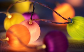 Picture lights, holiday, garland
