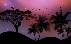 Picture birds, palm trees, desert
