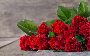 Picture table, roses, bouquet, red