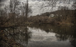 Picture forest, water, nature, lake, House