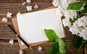 Picture letter, paper, branch, handle, white, lilac, the envelope