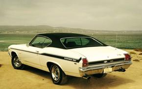 Picture Chevrolet, Beach, Chevelle, Sea, Yenko SC, White classic car