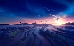 Picture sea, the sky, the sun, stars, clouds, light, flight, landscape, sunset, mountains, birds, nature, the …