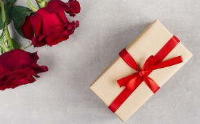 Picture flowers, holiday, gift, roses