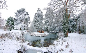 Picture winter, snow, landscape, nature, lake, beauty, house, island